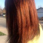 Lifestyle Beauty   Beauty Hair   Hair Care
