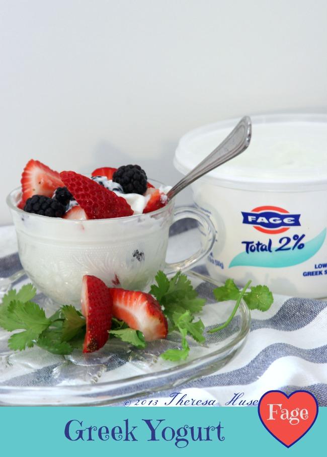Fage Greek Yogurt Review
