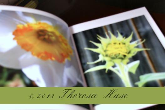 Photo Book Theresa Huse 2013