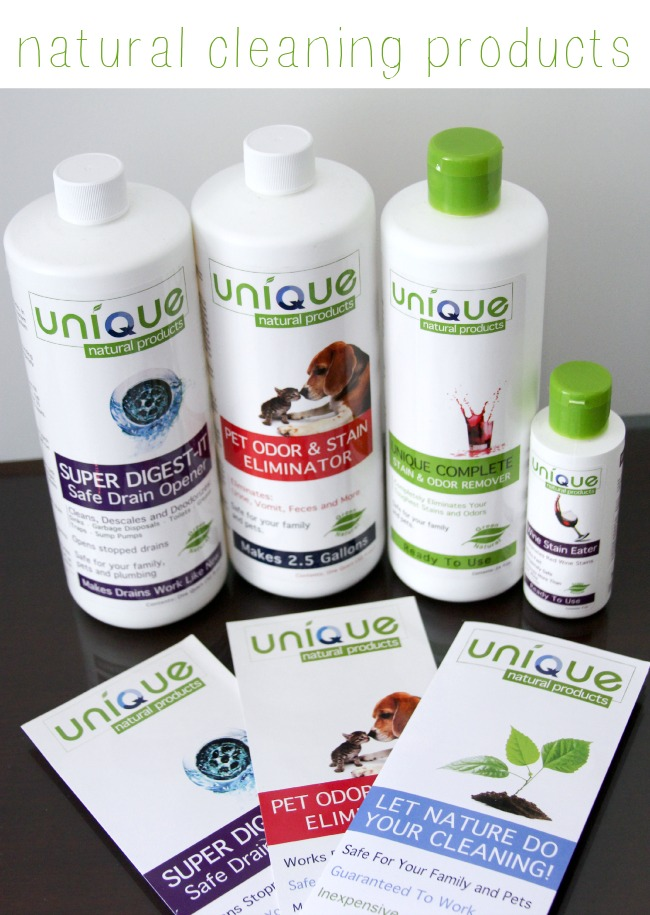 Unique natural cleaning products Theresa Huse 2013