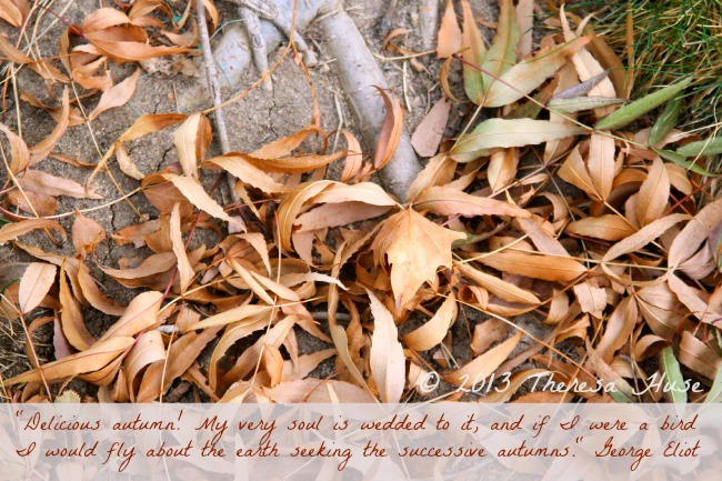 Photograph with Autumn quote, Theresa Huse 2013