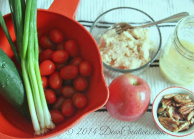 veggies_apple_tuna in a bowl_salad dressing_salad fixings_
