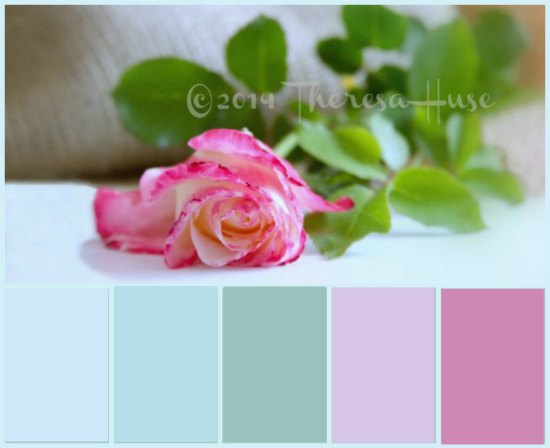 rose pastel rose color palette
