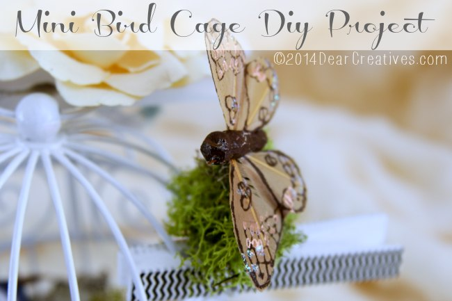 Mini Bird Cage Diy Project