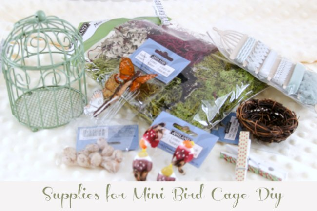 Mini Bird Cage Diy Supplies
