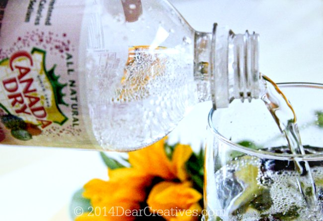 Canada Dry sparkling water being poured into a glass_