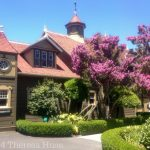 Back of one of the sides of Winchester Mystery House _© 2014 Theresa Huse
