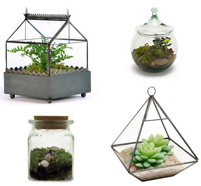 DIY Gardening Gifts: Terrarium Crafts
