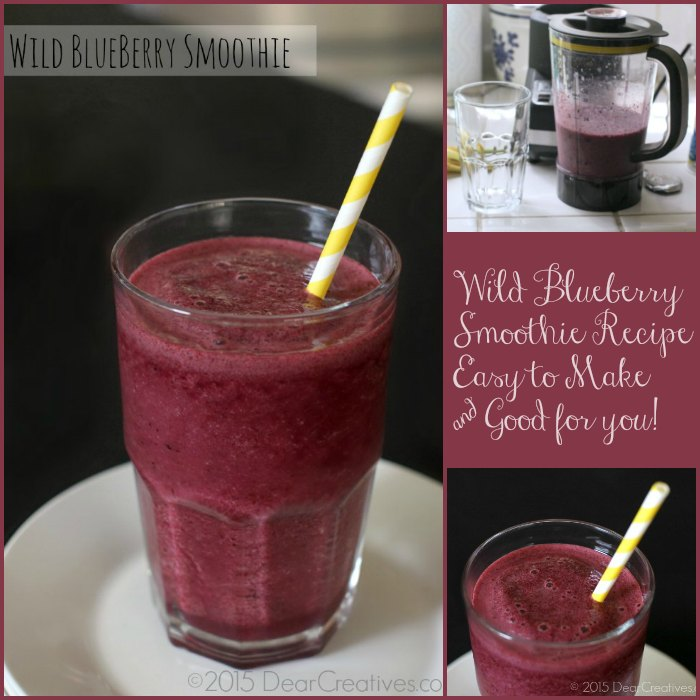 Homemade Smoothie Recipes | Wild Blueberry Smoothie