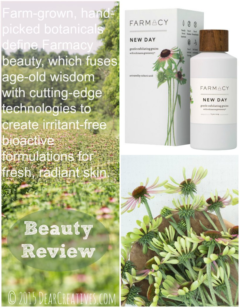 Beauty Review Farmacy New Day Gentle Exfoliating Grains