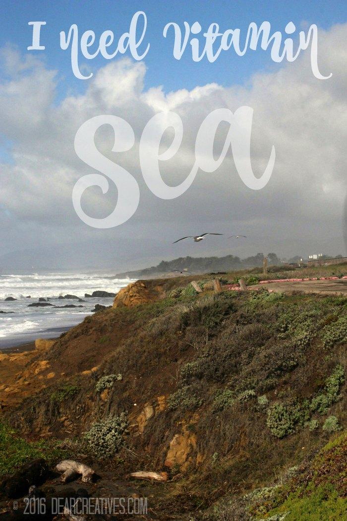 Beach Photography The Ocean Calls When You Need Vitamin Sea