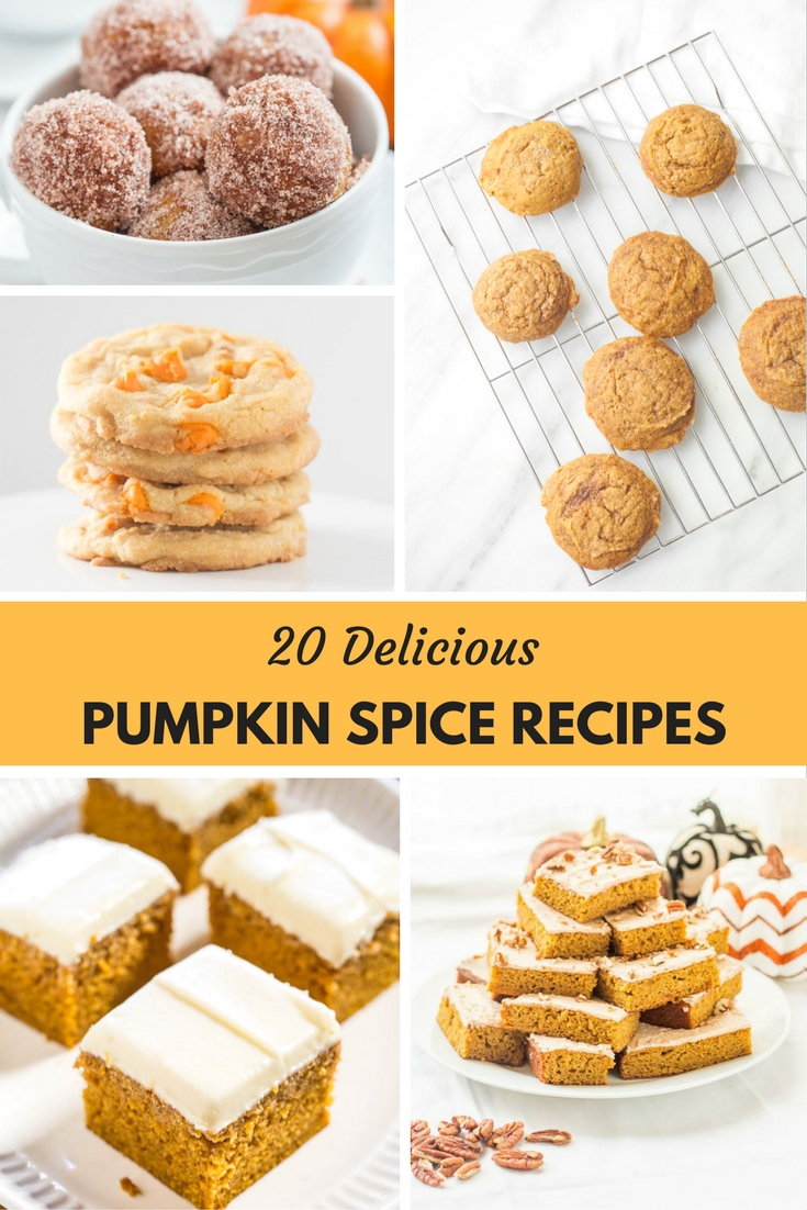 A Delicious Must Try Roundup Of The Best Pumpkin Spice Recipes!