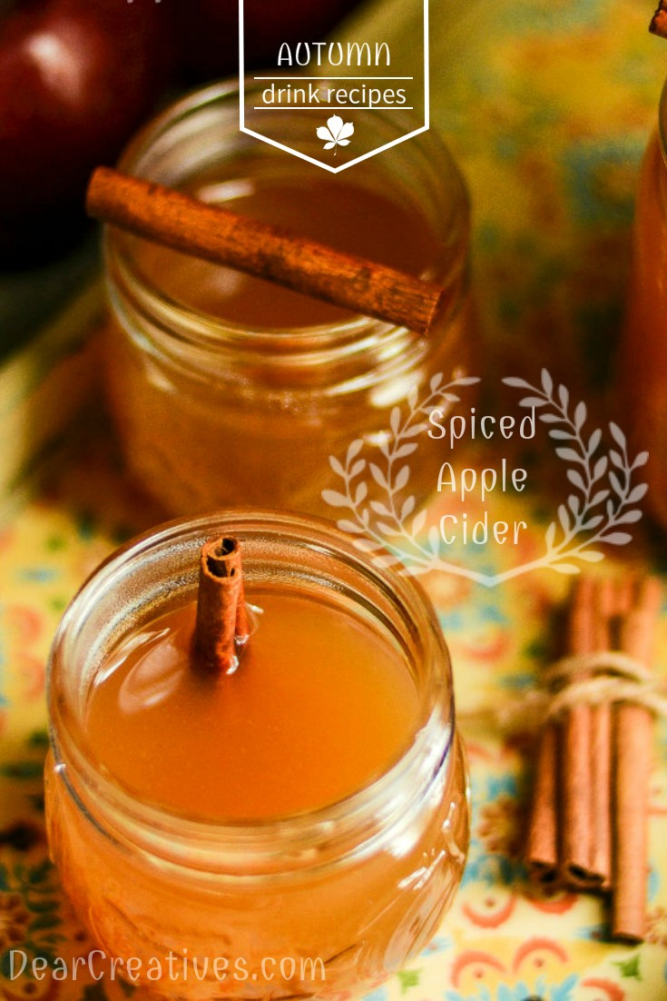 Spiced Apple Cider Recipe: A Perfect Blend Of Spices, Easy To Make And A Crowd Pleaser!