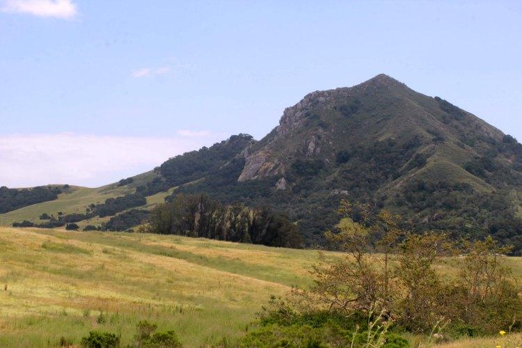San Luis Obispo Botanical Garden- DearCreatives.com Coastal range of hills and mountains in Central Ca.