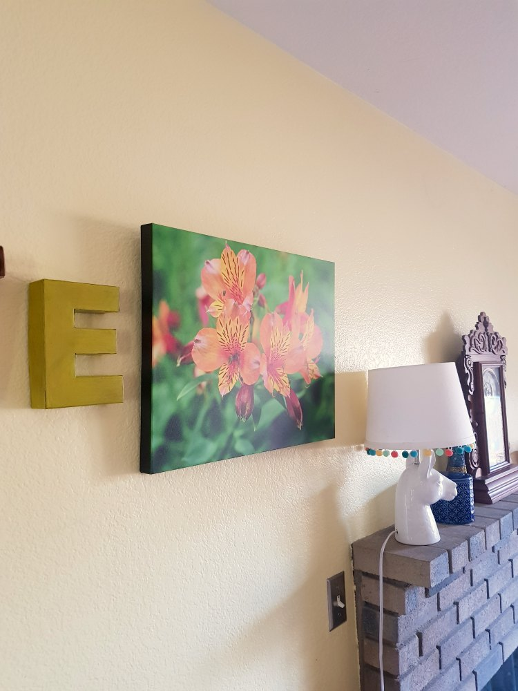 canvas on demand flowers nature photography printed on canvas find out more and grab a discount to try it. DearCreatives.com