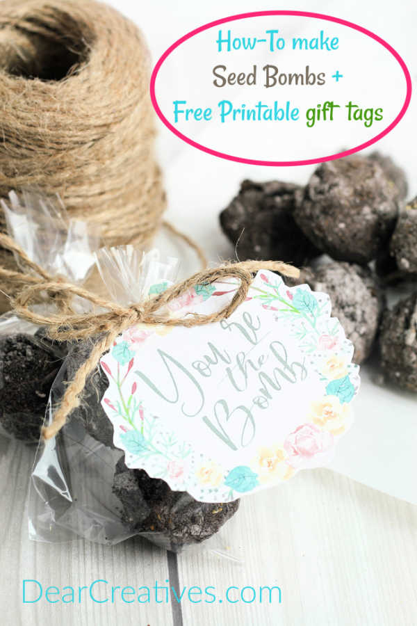 Completed gardening gift. Seed bombs in a clear package with a printed gift tag tied on. - DIY Seed Bombs - See how to make this easy gardening gift idea at DearCreatives.com
