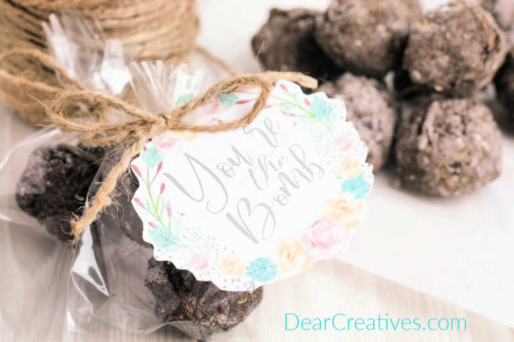 homemade seed bombs © 2019 DearCreatives.com