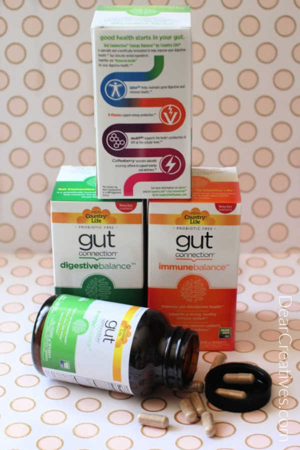 gut connection prebiotic health supplements for digestion - DearCreatives.com