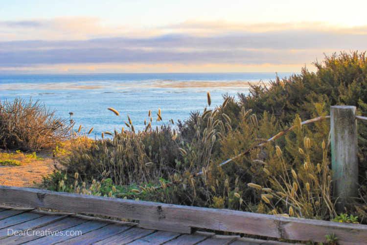 travel overlooking the ocean in Cambria,California © 2019 DearCreatives.com