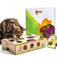 Cat Amazing Dash Best Cat Toy Ever!