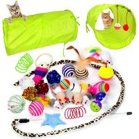 24 Cat Toys Kitten Toys Assortment Set