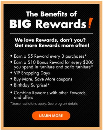 Big Lot's Rewards Program
