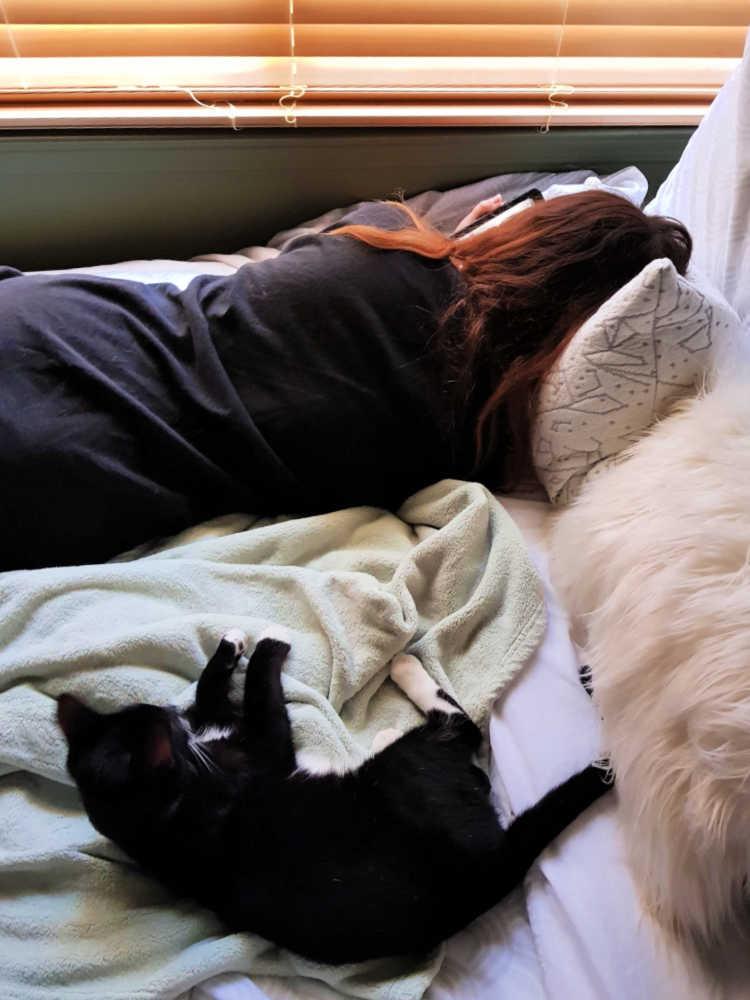 PineTales Buckwheat Pillows + How To Get A Good Night's Sleep!